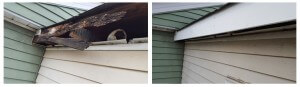 before and after blank eaves replaced